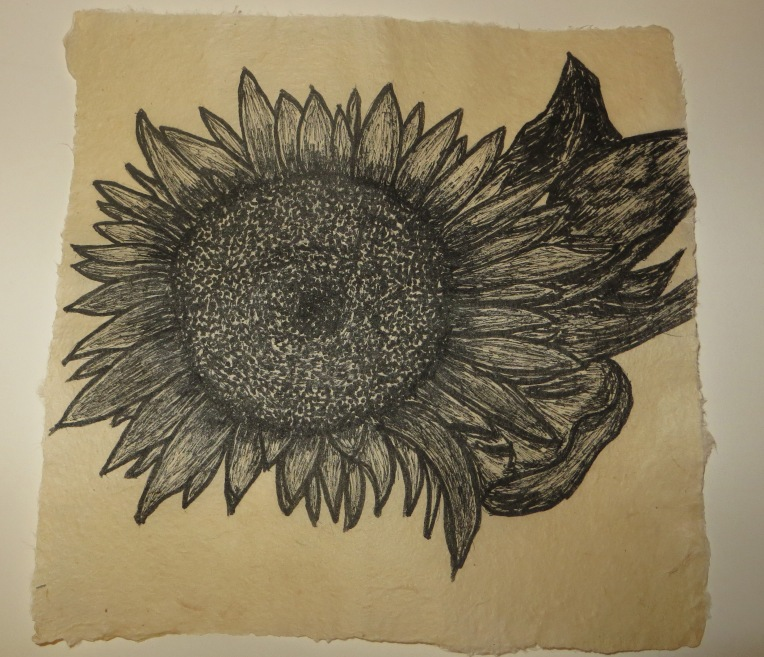 sunflower on flaxk paper - ink