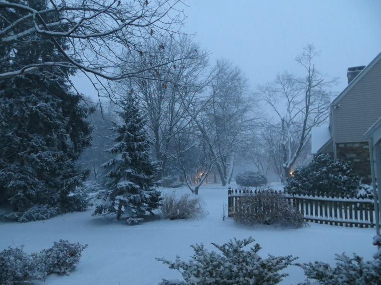 snowy winter day in PA