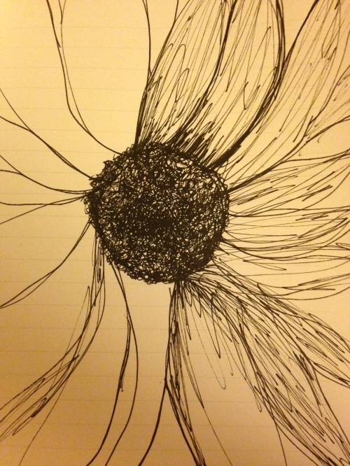 sunflower emerging on journal page