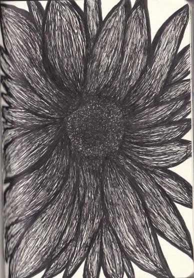 Sunflower Journal Entry