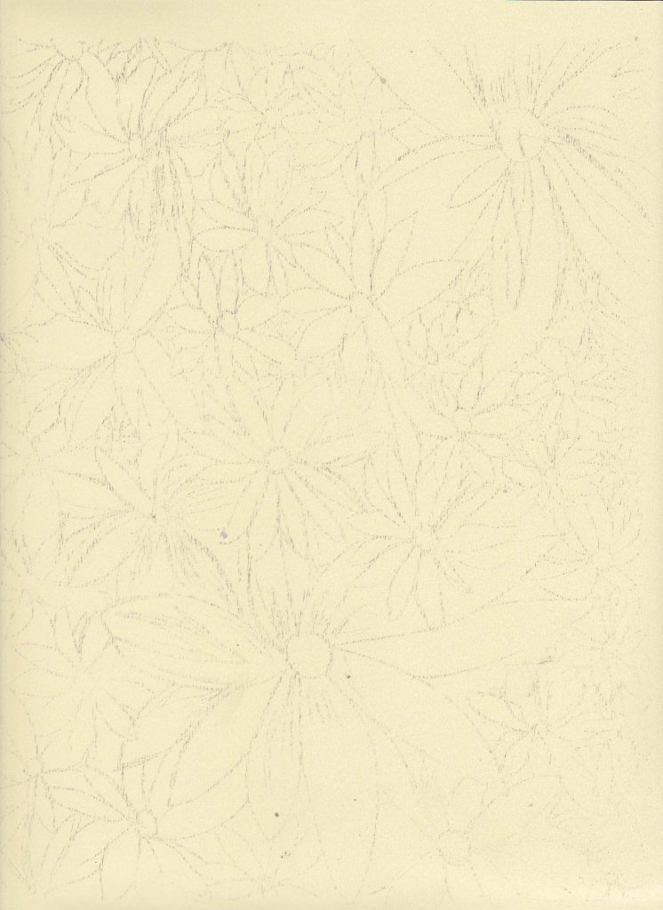 Transferring the Graphite_flower garden_complete