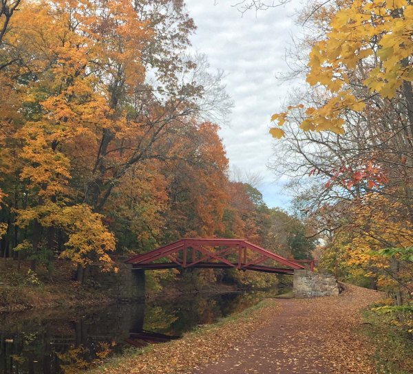 fall colors along the towpath