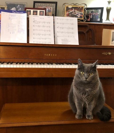mia guarding the piano