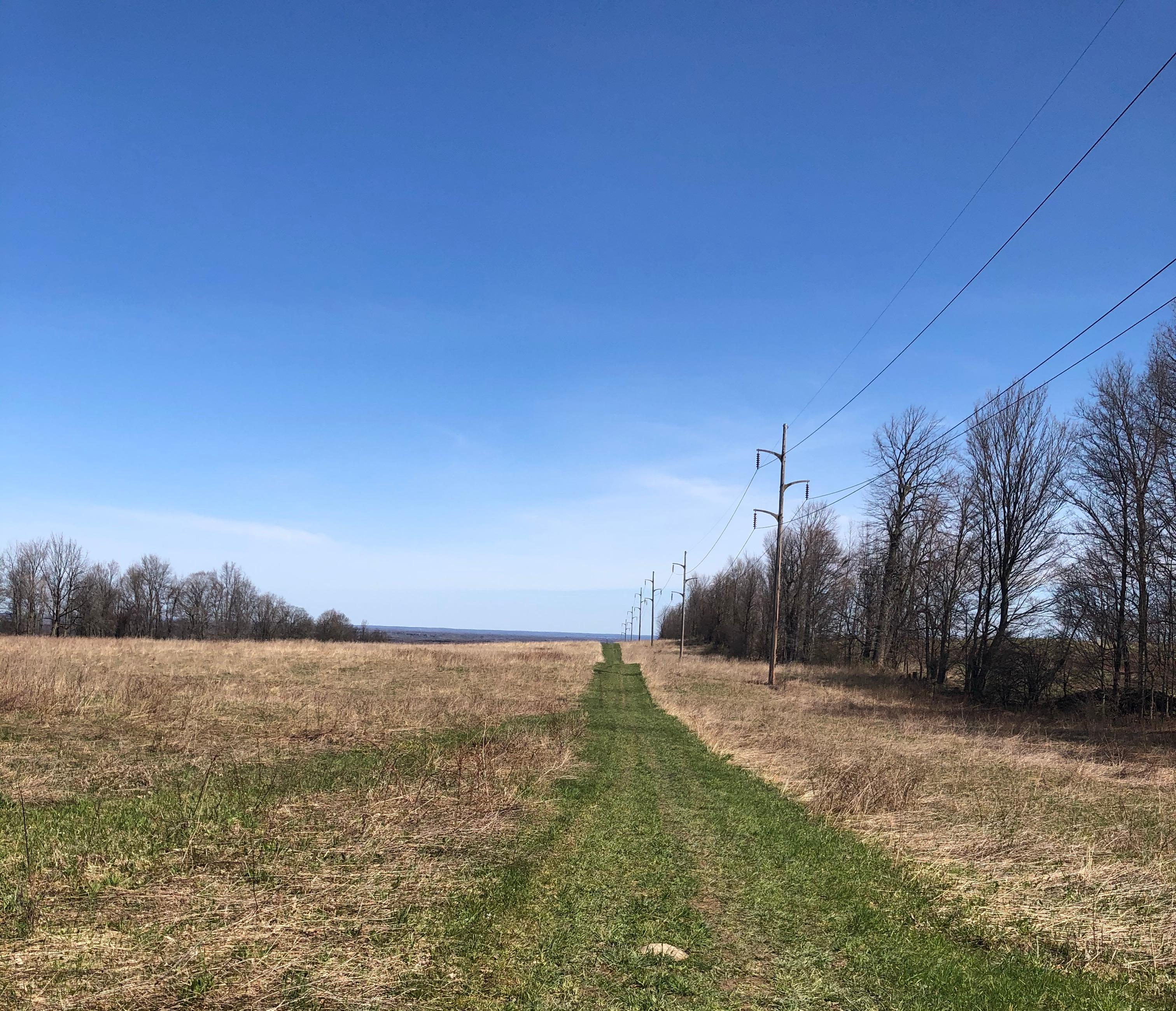 Grassy Path at Green Lakes